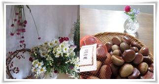 花と栗.jpg